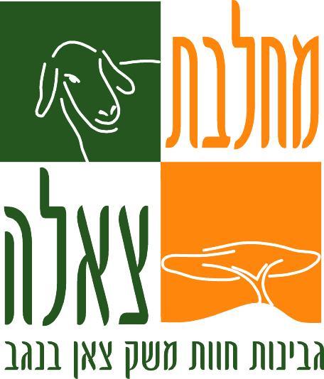 לוגו-חדש